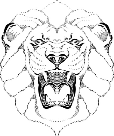 Vector line art illustration of a lion head Stock Illustration - 21655843