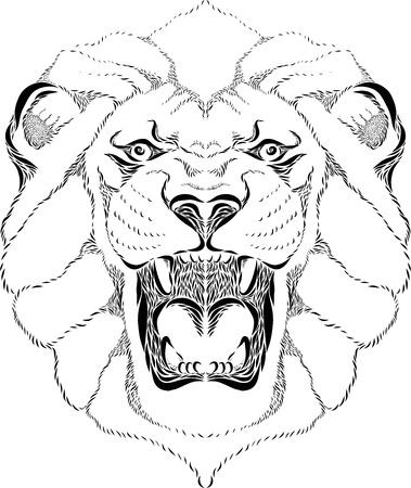 Vector line art illustration of a lion head Stock Illustration - 21655843