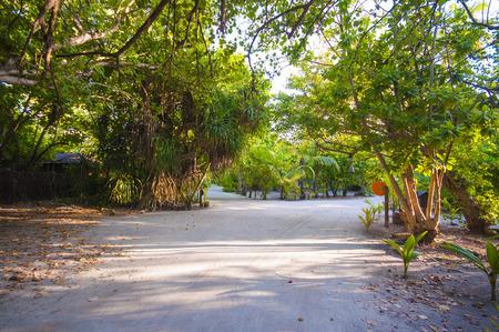 tropica: Walkway in Tropical Paradise Island, Kuredu, Maldives