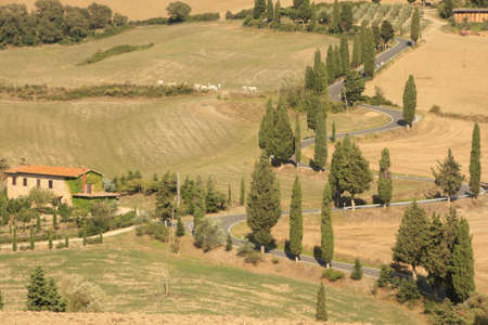 wine road: Rural road, Tuscany Italy with Cypress Trees Stock Photo
