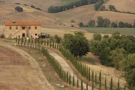 wine road: Rural road, Tuscany Italy with Cypress Trees Editorial