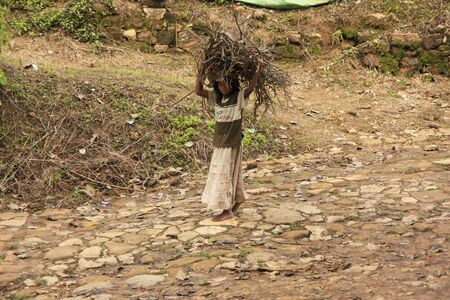 Young girl carrying firewood on her head, Sri Lanka