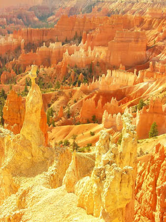 hoodoos: Amphitheater, view from Sunset point, Bryce Canyon National Park, Utah, USA Stock Photo