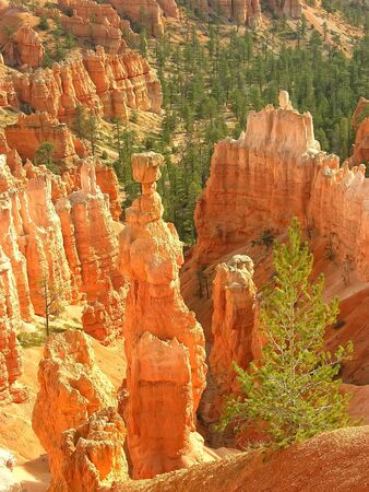 Thors Hammer, Amphitheater, view from Sunset poin, Bryce Canyon National Park, Utah, USA photo