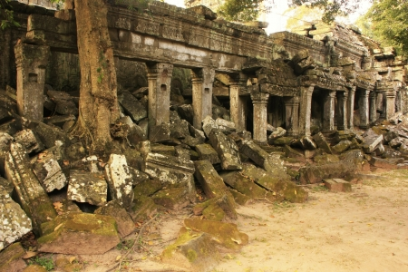 Ta Prohm temple, Angkor area, Siem Reap, Cambodia photo