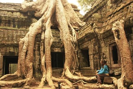Ta Prohm tempel, Angkor gebied, Siem Reap, Cambodja