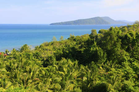 Lush forest of Koh Rong island, Cambodia, Southeast Asia