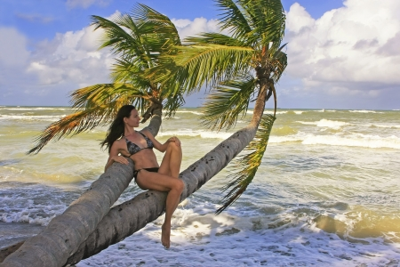 Young woman in bikini sitting on palm trees, Bonita beach, Dominican Republic photo