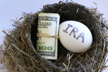 Nest with money and egg with IRA on it photo