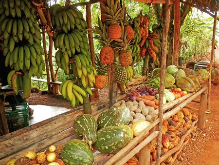 Fruit stand in small village, Samana peninsula, Dominican Republic