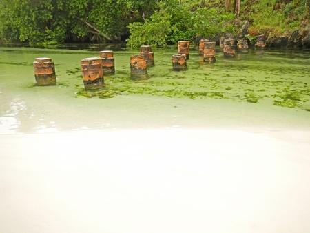 freshwater: Freshwater river at Rincon beach, Samana peninsula, Dominican Republic Stock Photo