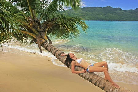 Young woman in bikini laying on leaning palm tree at Rincon beach, Samana peninsula, Dominican Republic photo
