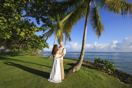 Groom and bride standing by palm tree photo