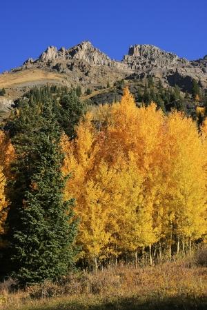 yankee: Yankee Boy Basin, Mount Sneffels wilderness, Colorado, USA Stock Photo