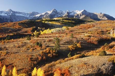uncompahgre national forest: Dallas Divide, Uncompahgre National Forest, Colorado, USA