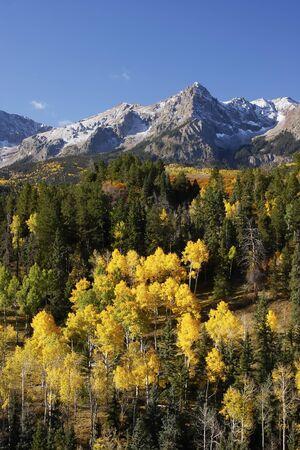 divides: Dallas Divide, Uncompahgre National Forest, Colorado, EE.UU.