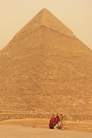chephren: Camel resting near Pyramid of Khafre during sand storm, Cairo, Egypt Stock Photo