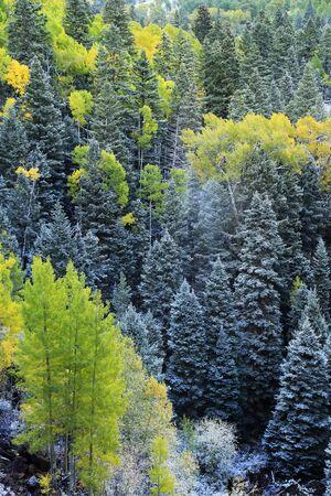 Mount Sneffels Range with fresh snow, Colorado, USA