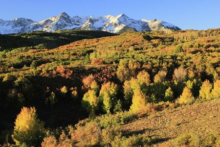 Dallas Divide, Uncompahgre National Forest, Colorado, USA photo