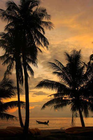 Tropical beach with palm trees at sunrise, Wua Talab island, Ang Thong National Marine Park, Thailand photo