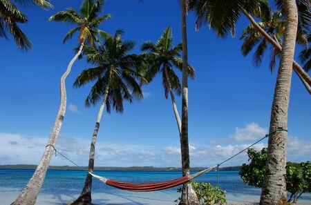 Colorful hammock between palm trees, Ofu island, Vavau group, Tonga