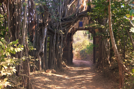 Entrance gate to Ranthambore National Park, Rajasthan, India