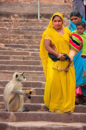 gray langur: Indian women in colorful sari with a kid walking down the stairs at Ranthambore Fort, Rajasthan, India