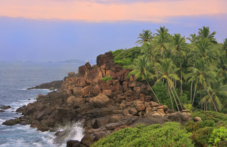 Rocky shore with palm trees, Unawatuna, Sri Lanka photo