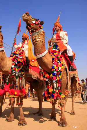Camel procession at Desert Festival, Jaisalmer, Rajasthan, India