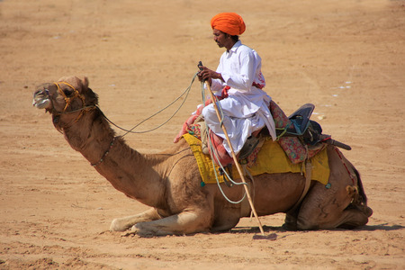 polo player: Polo player with his camel at Desert Festival, Jaisalmer, Rajasthan, India