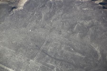 designated: Aerial view of Nazca Lines - Hummingbird geoglyph, Peru. The Lines were designated