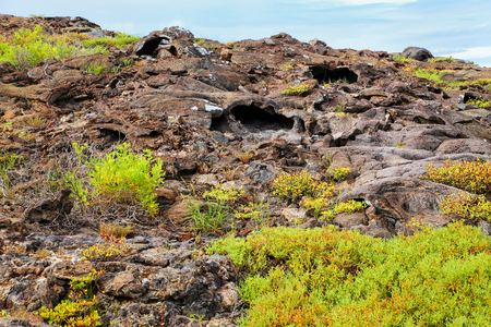 chinese hat: Lava tubes on Chinese Hat island in Galapagos National Park, Ecuador.