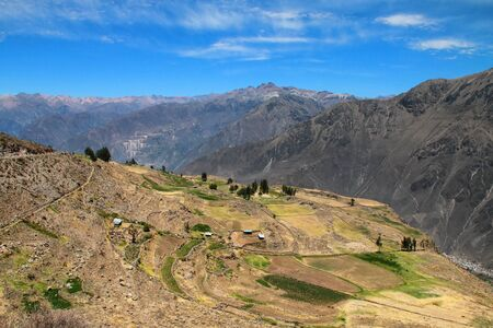 stepped: Stepped terraces in Colca Canyon in Peru. It is one of the deepest canyons in the world with a depth of 3,270 meters. Stock Photo