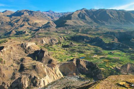 Stepped terrassen in Colca Canyon in Peru. Het is een van de diepste kloven ter wereld met een diepte van 3270 meter. Stockfoto