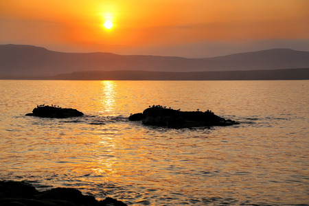 desert ecosystem: Sunrise at Paracas National Reserve, Peru. Main purpose of the Reserve is to protect marine ecosystem and historical cultural heritage.