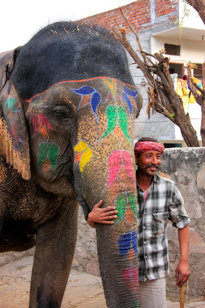 quarters: Mahout standing with painted elephant at small elephant quarters in Jaipur, Rajasthan, India. Elephants are used for rides and other tourist activities in Jaipur.