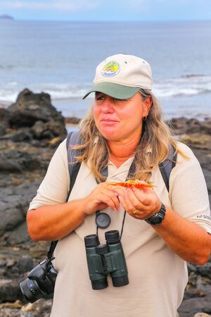 chinese hat: Naturalist guide showing shed shell of Sally lightfoot crab (Grapsus grapsus) on Chinese Hat island, Galapagos National Park, Ecuador
