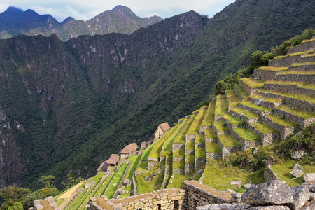 voted: Agricultural stone terraces at  Machu Picchu in Peru. In 2007 Machu Picchu was voted one of the New Seven Wonders of the World.