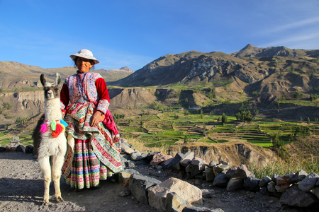Local woman with llama standing at Colca Canyon in Peru. It is one of the deepest canyons in the world with a depth of 3,270 meters. Stok Fotoğraf - 61177402