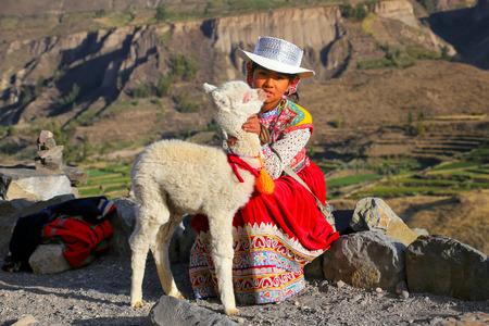 ペルーのコルカ渓谷に座って赤ちゃんラマと地元の女の子。3,270 メートルの深さで、世界で最も深い峡谷であります。