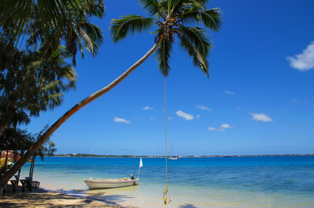 Leaning palm tree with rope swing at Pangaimotu island near Tongatapu island in Tonga. Kindom of Tonga is an archipelago comprised of 169 islands