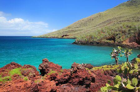 Shoreline of Rabida Island in Galapagos National Park, Ecuador