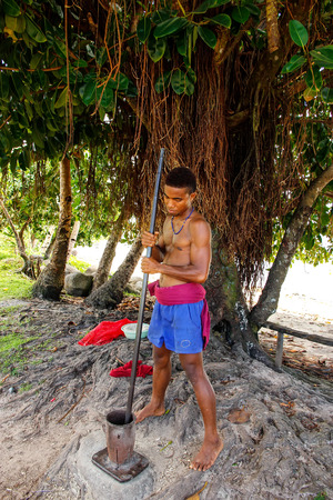 Young man pounding kava roots in Lavena village, Taveuni Island, Fiji. The roots are used to produce a drink with sedative, anesthetic, euphoriant, and entheogenic properties. Editorial