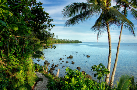 Ocean view along Lavena Costal Walk on Taveuni Island, Fiji. Taveuni is the third largest island in Fiji. Banque d'images