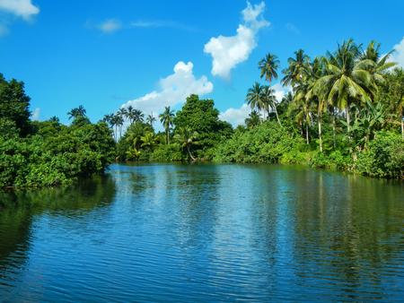 River in Bouma village on Taveuni Island, Fiji. Taveuni is the third largest island in Fiji.