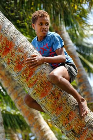 Local boy climbing palm tree in Lavena village, Taveuni Island, Fiji. Taveuni is the third largest island in Fiji.