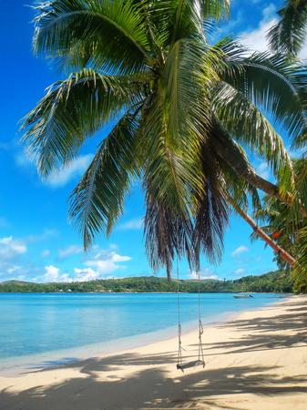 Rope swing at the beach on Nananu-i-Ra island, Fiji. Stock Photo