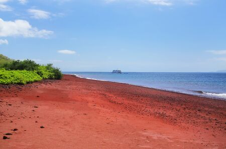 Red sand beach on Rabida Island in Galapagos National Park, Ecuador
