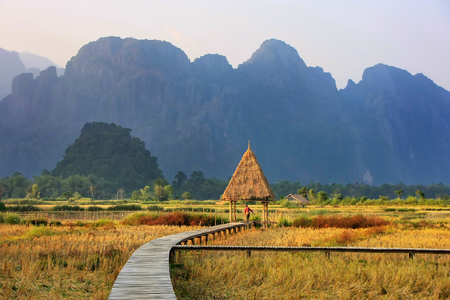 Harvested rice field surrounded by rock formations in Vang Vieng, Laos. Vang Vieng is a popular destination for adventure tourism in a limestone karst landscape.