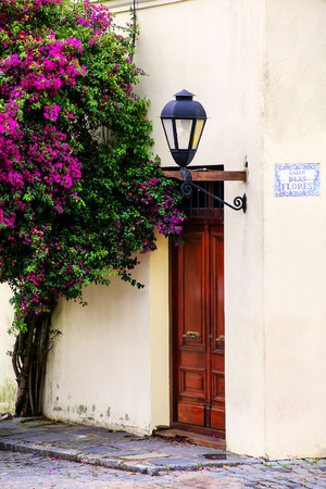 Close-up o a building with a street lamp and bougainvillea tree in Colonia del Sacramento, Uruguay. It is one of the oldest towns in Uruguay